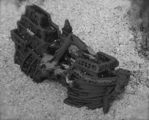 The wreck discovered by lost scuba tourists off Blacktip Island could be the Caribbean's legendary Santo Mojito pirate ship.