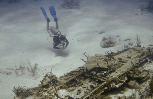 Divemaster Alison Diesel investigates airplane wreckage from the World War Two Battle of the Blacktip Sea.