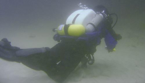 mock-lionfish