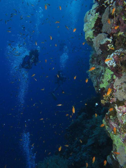 underwater rock climbing