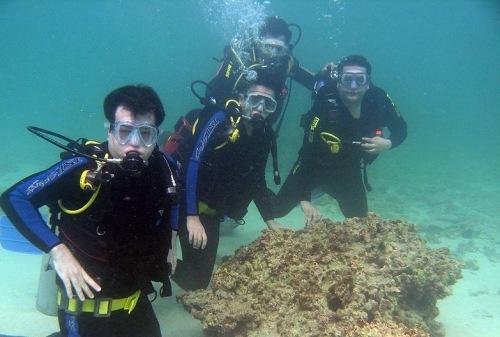underwater xmas carol
