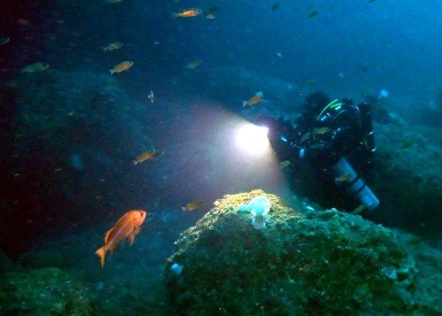 underwater phone booth