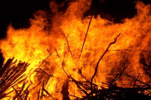 tree lighting catches fire