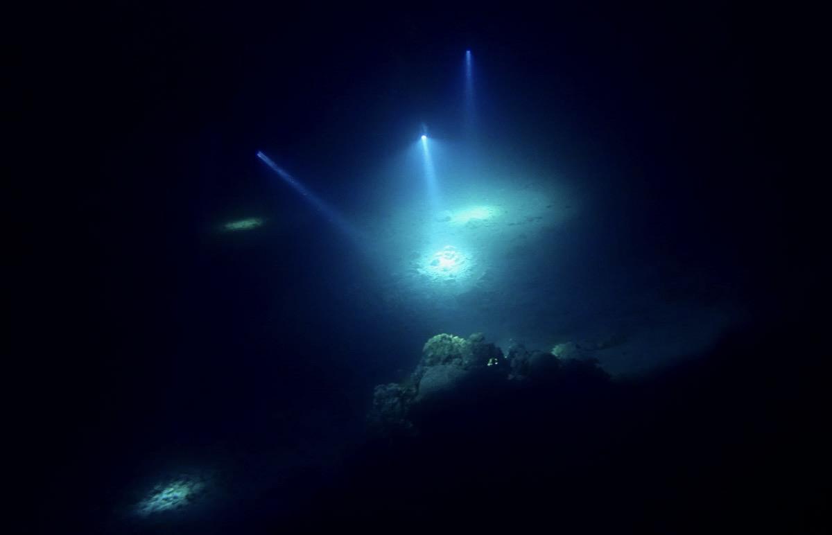 Haunted Reef